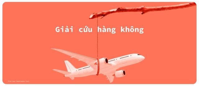 Hàng không Việt một năm bay trong bão - Ảnh 6.
