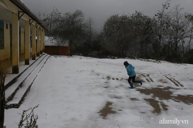 Ảnh: Đẹp ngỡ ngàng khung cảnh tuyết rơi phủ trắng đỉnh đồi Y Tý - Lào Cai, mùa săn tuyết chính thức bắt đầu! - Ảnh 10.