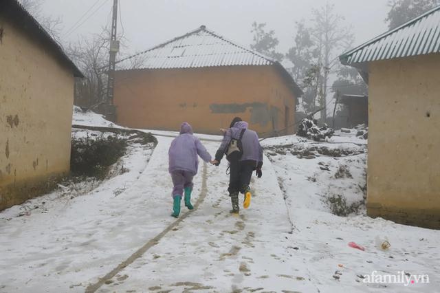 Ảnh: Đẹp ngỡ ngàng khung cảnh tuyết rơi phủ trắng đỉnh đồi Y Tý - Lào Cai, mùa săn tuyết chính thức bắt đầu! - Ảnh 12.