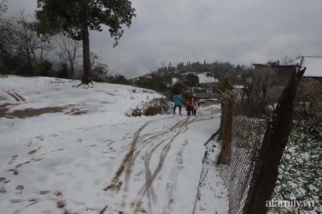 Ảnh: Đẹp ngỡ ngàng khung cảnh tuyết rơi phủ trắng đỉnh đồi Y Tý - Lào Cai, mùa săn tuyết chính thức bắt đầu! - Ảnh 14.