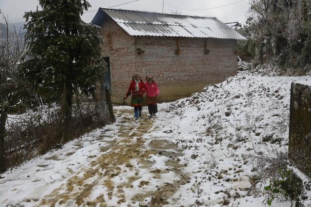 Ảnh: Đẹp ngỡ ngàng khung cảnh tuyết rơi phủ trắng đỉnh đồi Y Tý - Lào Cai, mùa săn tuyết chính thức bắt đầu! - Ảnh 20.