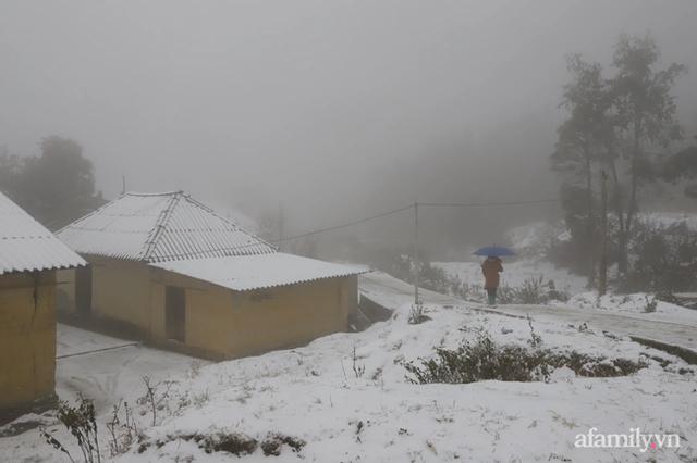 Ảnh: Đẹp ngỡ ngàng khung cảnh tuyết rơi phủ trắng đỉnh đồi Y Tý - Lào Cai, mùa săn tuyết chính thức bắt đầu! - Ảnh 4.