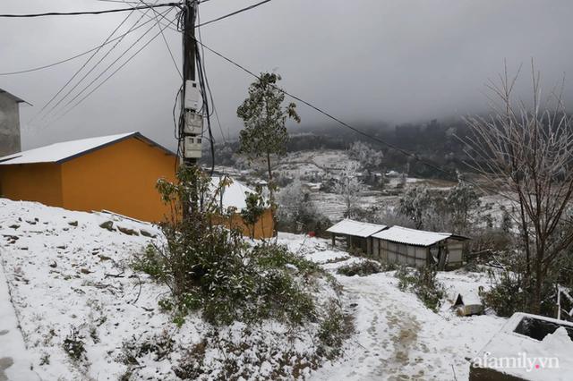 Ảnh: Đẹp ngỡ ngàng khung cảnh tuyết rơi phủ trắng đỉnh đồi Y Tý - Lào Cai, mùa săn tuyết chính thức bắt đầu! - Ảnh 6.