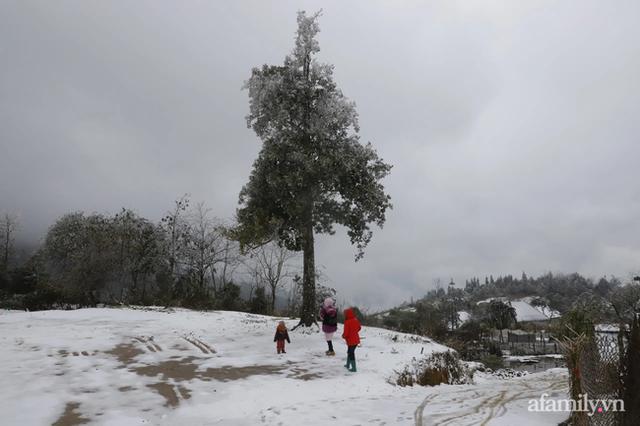 Ảnh: Đẹp ngỡ ngàng khung cảnh tuyết rơi phủ trắng đỉnh đồi Y Tý - Lào Cai, mùa săn tuyết chính thức bắt đầu! - Ảnh 8.