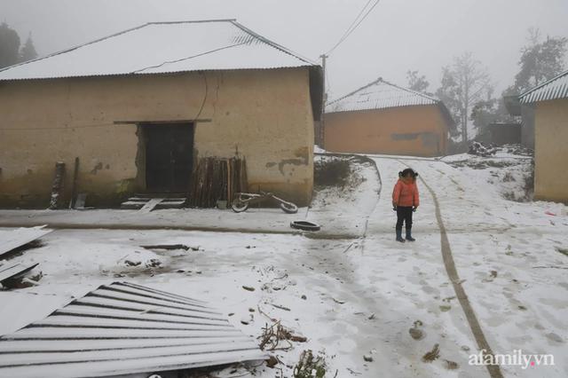 Ảnh: Đẹp ngỡ ngàng khung cảnh tuyết rơi phủ trắng đỉnh đồi Y Tý - Lào Cai, mùa săn tuyết chính thức bắt đầu! - Ảnh 9.
