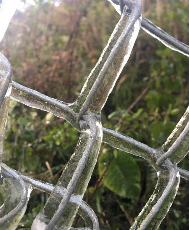 Nhiều nơi ở Nghệ An xuất hiện băng giá, cây cối, vật dụng đều bị đóng băng - Ảnh 11.