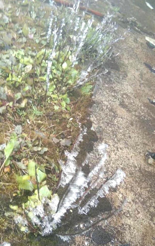 Nhiều nơi ở Nghệ An xuất hiện băng giá, cây cối, vật dụng đều bị đóng băng - Ảnh 10.