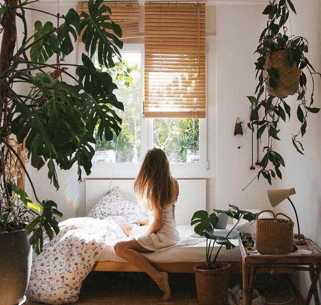 Đừng để 5 thứ này gần đầu giường, nếu không bạn sẽ bị rụng tóc, ngủ kém, sức khỏe giảm sút - Ảnh 3.