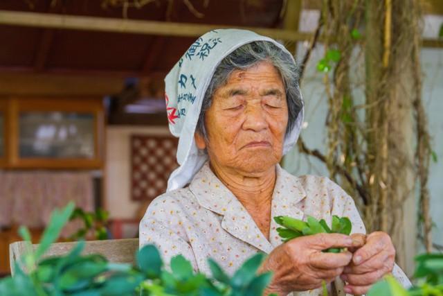 Hành trình theo đuổi triết lý ikigai - Bí quyết sống lâu và hạnh phúc của người Nhật tồn tại hàng nghìn năm nhưng giờ mới được thế giới chú ý - Ảnh 2.