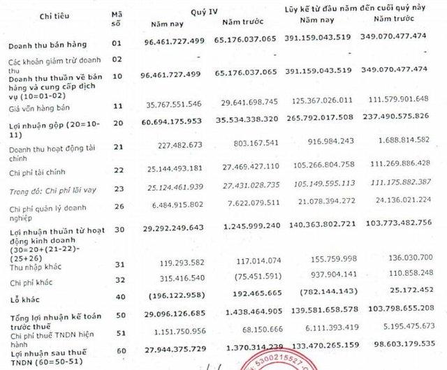 Nedi 2 báo lãi quý 4/2020 đạt 28 tỷ đồng, tăng gấp 20 lần so với cùng kỳ - Ảnh 1.
