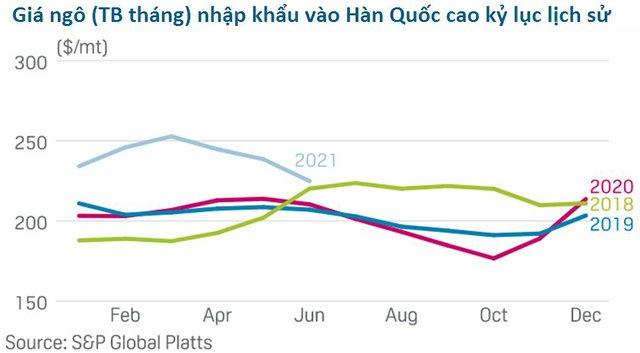 Châu Á sẽ là động lực chính thúc đẩy giá ngô lập những kỷ lục mới - Ảnh 2.