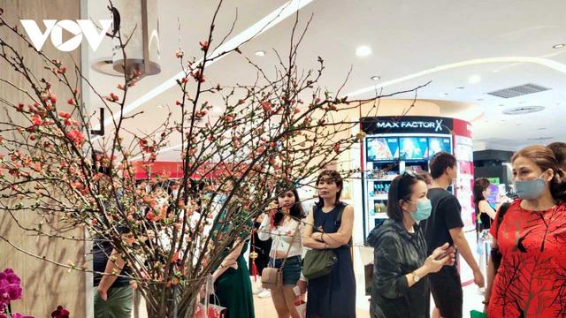 Hoa đào nhập khẩu hút khách chơi Tết tại TP HCM - Ảnh 1.