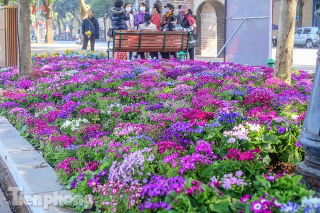 Hà Nội rực rỡ hoa chào mừng Đại hội Đảng lần thứ XIII - Ảnh 1.
