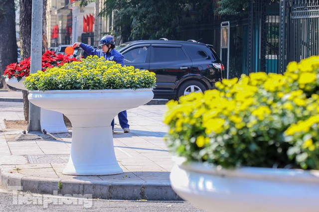 Hà Nội rực rỡ hoa chào mừng Đại hội Đảng lần thứ XIII - Ảnh 17.