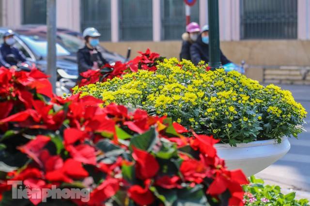 Hà Nội rực rỡ hoa chào mừng Đại hội Đảng lần thứ XIII - Ảnh 18.