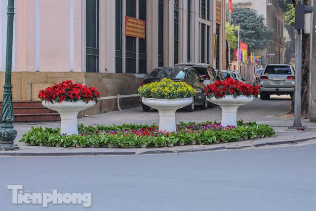 Hà Nội rực rỡ hoa chào mừng Đại hội Đảng lần thứ XIII - Ảnh 19.