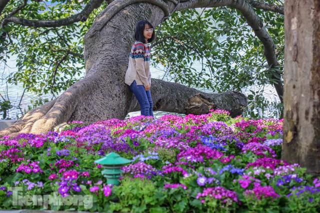 Hà Nội rực rỡ hoa chào mừng Đại hội Đảng lần thứ XIII - Ảnh 10.