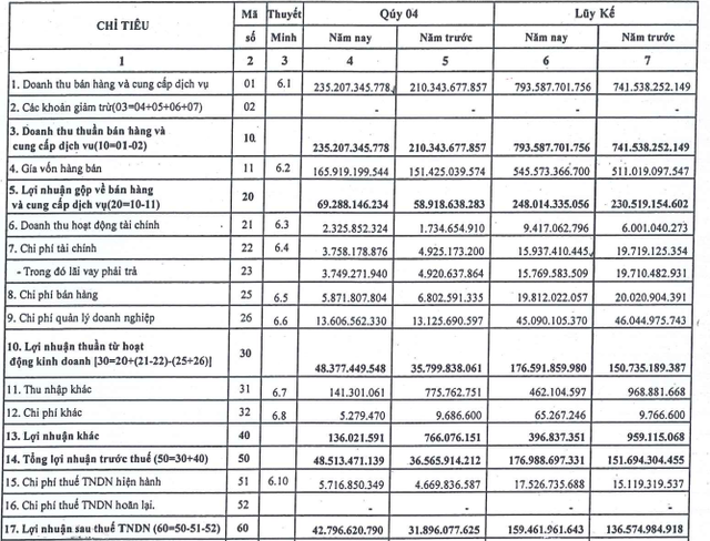 Cảng Đồng Nai (PDN) báo lãi 160 tỷ đồng năm 2020, vượt gần 11% kế hoạch - Ảnh 1.