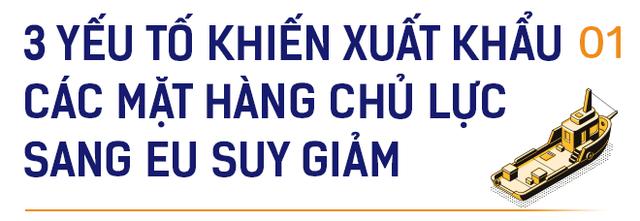 Đại sứ EU: EVFTA là yếu tố giúp Việt Nam như 'Hổ mọc thêm cánh' - Ảnh 1.