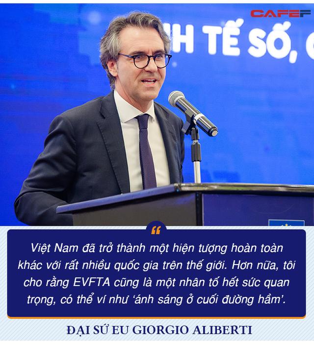 Đại sứ EU: EVFTA là yếu tố giúp Việt Nam như 'Hổ mọc thêm cánh' - Ảnh 2.