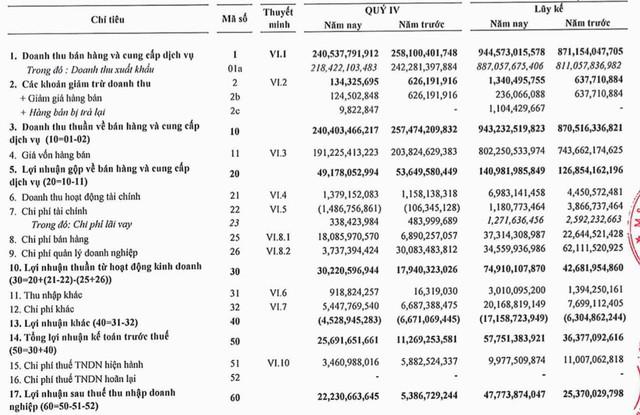 Savimex (SAV): Quý 4 lãi 22 tỷ đồng cao gấp 4 lần cùng kỳ nhờ kiểm soát tốt chi phí - Ảnh 1.