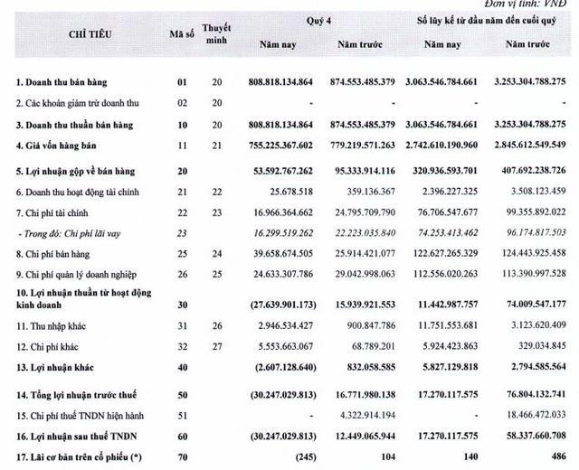 Xi măng Vicem Bút Sơn (BTS): Nhu cầu xi măng sụt giảm khiến quý 4 lỗ 30 tỷ đồng - Ảnh 1.