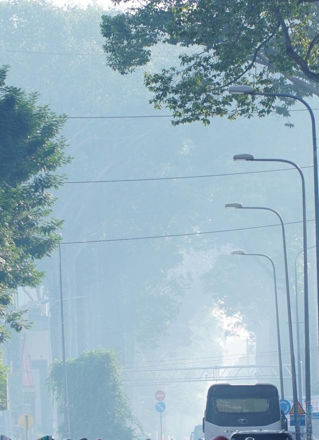 Nhiều tòa nhà cao tầng ở TP HCM biến mất trong màn sương - Ảnh 3.