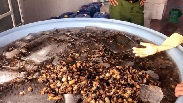 Cận Tết, 1.3 tấn thịt ốc ngâm hóa chất bị phanh phui: Chuyên gia khuyến cáo những điều cực QUAN TRỌNG khi ăn ốc  - Ảnh 1.