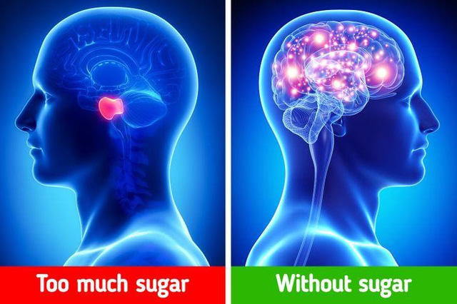 Càng hạn chế đường trong chế độ ăn, bạn càng được hưởng những lợi ích kỳ diệu cho sức khỏe: Cải thiện trí nhớ, chậm lão hóa, tâm trạng tốt hơn bất ngờ - Ảnh 3.