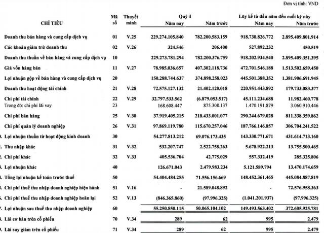 Công ty dịch vụ hàng không Sasco của ông Johnathan Hạnh Nguyễn giảm hơn 60% lãi trong năm 2020 - Ảnh 1.