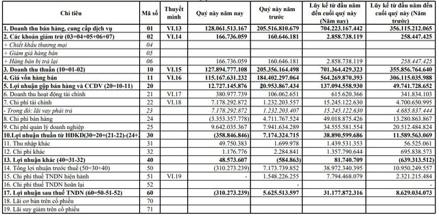 Danameco (DNM): Quý 4 báo lỗ 310 triệu đồng do đẩy mạnh đầu tư mở rộng thị trường xuất khẩu - Ảnh 1.