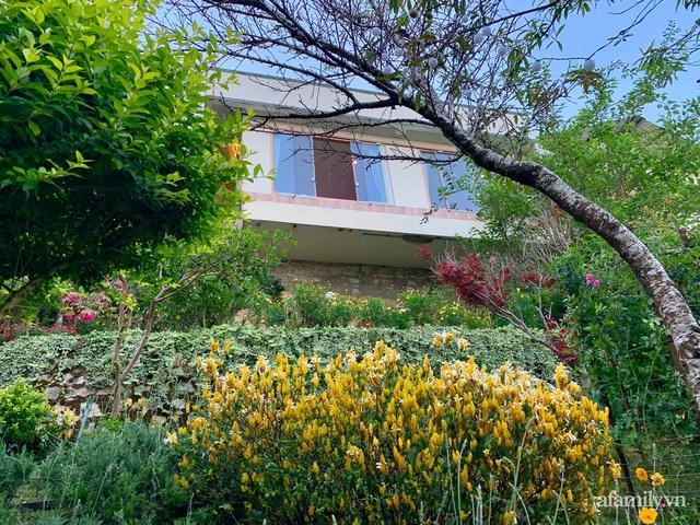 Ngôi nhà nhỏ yên bình sở hữu khu vườn đẹp như xứ sở thần tiên giữa lưng chừng đồi ở Đà Lạt - Ảnh 1.