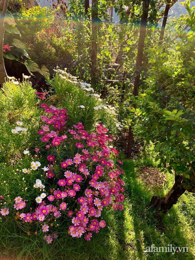 Ngôi nhà nhỏ yên bình sở hữu khu vườn đẹp như xứ sở thần tiên giữa lưng chừng đồi ở Đà Lạt - Ảnh 15.