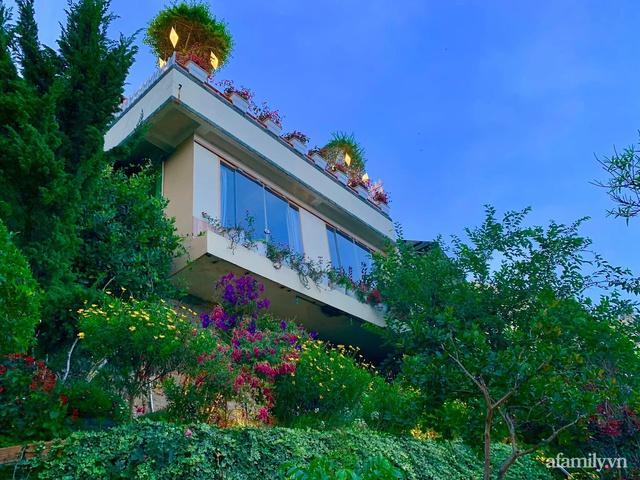 Ngôi nhà nhỏ yên bình sở hữu khu vườn đẹp như xứ sở thần tiên giữa lưng chừng đồi ở Đà Lạt - Ảnh 24.