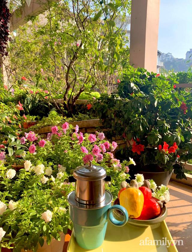 Ngôi nhà nhỏ yên bình sở hữu khu vườn đẹp như xứ sở thần tiên giữa lưng chừng đồi ở Đà Lạt - Ảnh 31.
