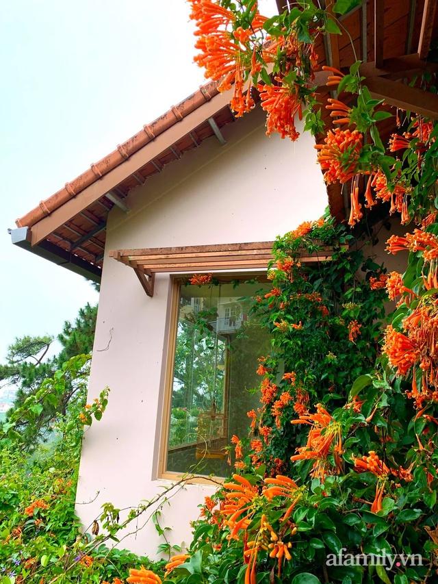 Ngôi nhà nhỏ yên bình sở hữu khu vườn đẹp như xứ sở thần tiên giữa lưng chừng đồi ở Đà Lạt - Ảnh 35.