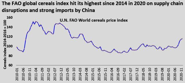 Covid-19 gây tổn thương các thị trường gạo, tấm và ngô đến mức nào - Ảnh 2.