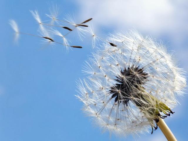 Ở đời có 5 quy luật, ai hiểu được sẽ hưởng lợi cả đời: Tránh xa tai ương, cuộc sống an yên, tự tại - Ảnh 2.