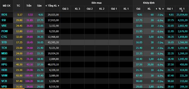Nhà đầu tư hoảng loạn, VnIndex giảm sâu nhất lịch sử - Ảnh 1.