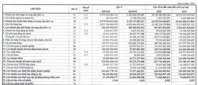 Savico (SVC) báo lãi 224 tỷ đồng năm 2020, hoàn thành gấp đôi kế hoạch được giao - Ảnh 1.