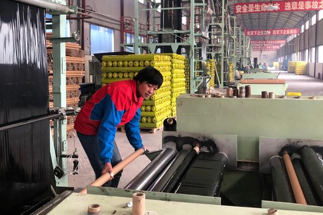 Trung Quốc xóa đói giảm nghèo cực kỳ tốn kém với công việc, nhà ở và bò: Kẻ tung hô, người nức nở khóc than - Ảnh 3.