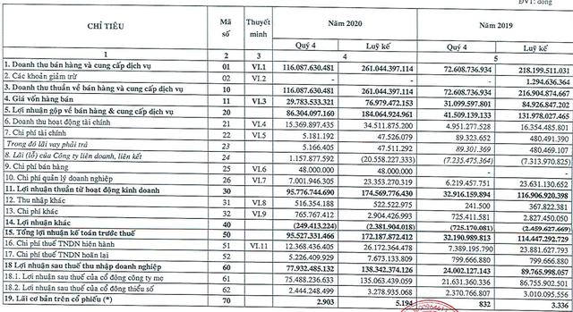Khu công nghiệp Tín Nghĩa (TIP) lãi kỷ lục 78 tỷ đồng trong quý 4/2020, gấp 3,25 lần cùng kỳ năm trước - Ảnh 1.