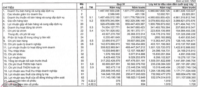 Sonadezi (SZN) báo lãi 1.264 tỷ đồng cả năm, vượt 38% kế hoạch - Ảnh 2.