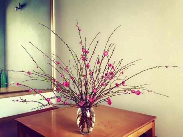 7 loại hoa cúng trên bàn thờ Tết vừa đẹp vừa hợp phong thủy và những kiêng kị khi chọn hoa - Ảnh 6.