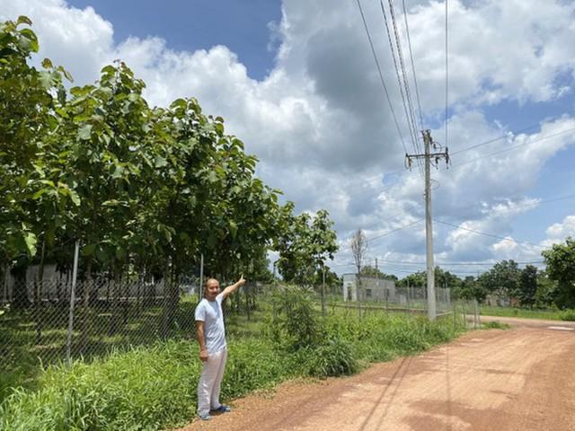 Bóc mẽ loạt dự án điện mặt trời 'núp bóng' nông nghiệp được hợp thức hóa - Ảnh 3.