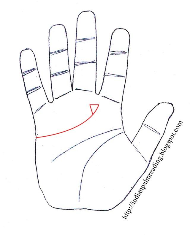 Nếu lòng bàn tay có một trong những dấu hiệu sau, cuộc đời sớm muộn cũng thăng hạng - Ảnh 4.