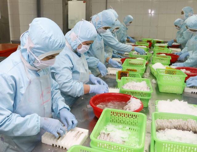 Thiếu vỏ container ảnh hưởng xấu đến việc xuất khẩu tôm - Ảnh 2.