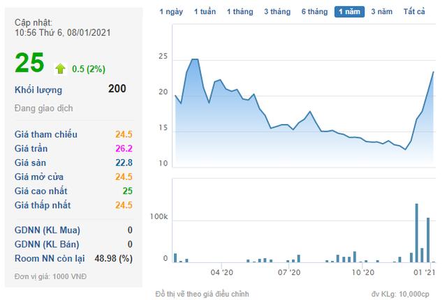 Tài chính Hoàng Minh (KPF) chào bán 36 triệu cổ phiếu tăng vốn điều lệ lên gấp 3 - Ảnh 1.