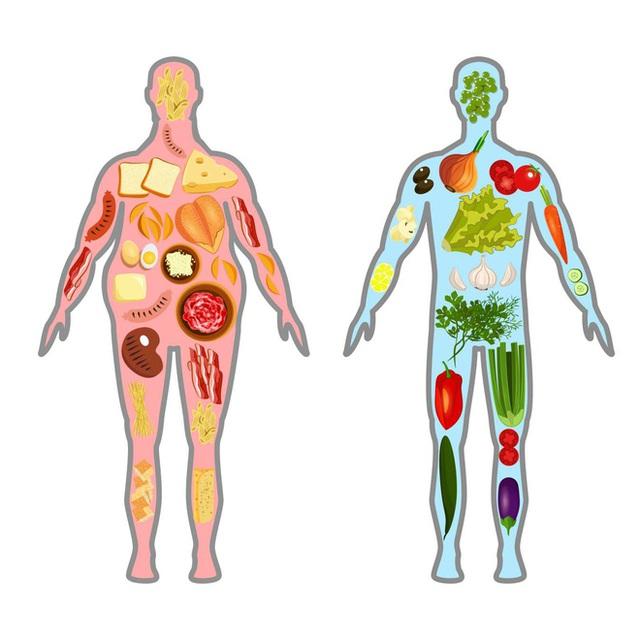 Cơ thể có hệ thống thải độc tự thân, hiểu cách vận hành này thì không cần tự thải độc - Ảnh 1.