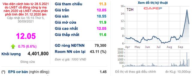 Thoái vốn bất thành, Thuduc House (TDH) tiếp tục đăng ký bán toàn bộ 5,4 triệu cổ phiếu FDC - Ảnh 1.